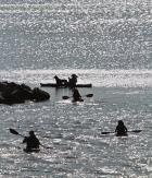 a kayak armada